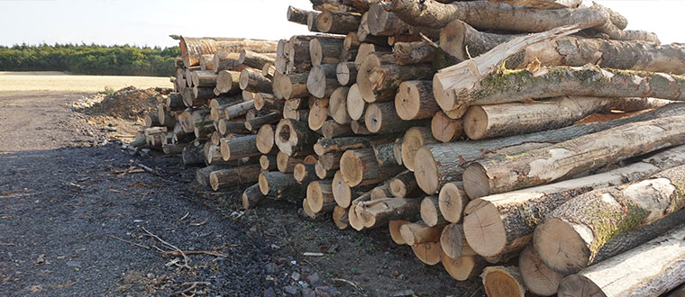 Logs for delivery in Canterbury and Whitstable area