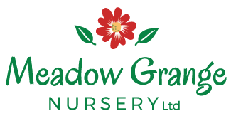 Meadow Grange Nursery, Garden Centre near Herne Bay and Canterbury